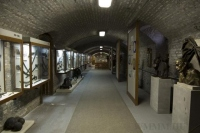 Kiállítás: Pincemúzeum - Gyermekfoglalkoztató tér