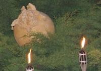 Két bolond – Vilimi József felvétele (2006.06.24.)