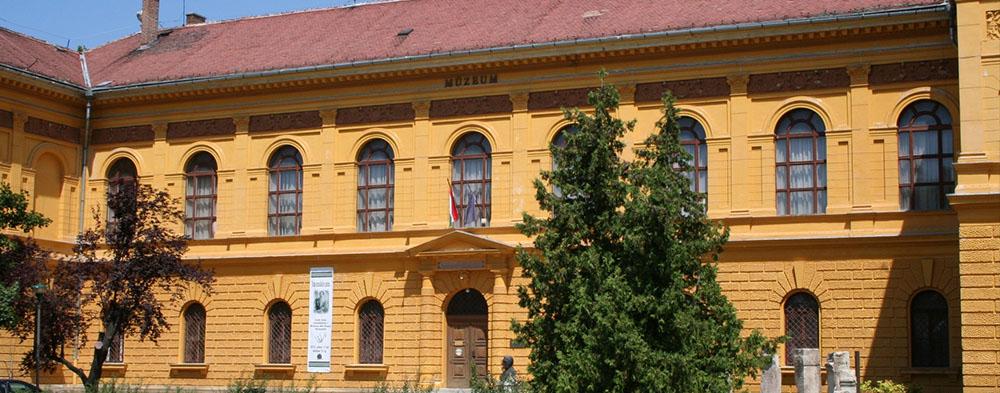 Wosinsky Mór Múzeum