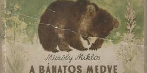 Bánatos medve borítója